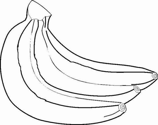 Fruits Coloring Pages Crafts And Worksheets For