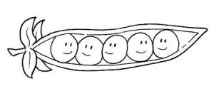 bean_coloring_paper