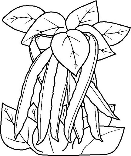 Vegetables coloring pages Crafts