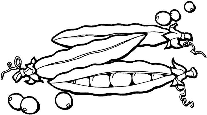 Fruits and vegetables coloring pages crafts and for Bean coloring page