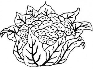 cauliflower-coloring-page