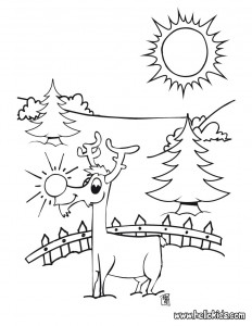 christmas_santa's_reindeer_coloring_pages  (20)