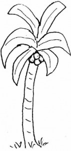 coconut_tree_coloring