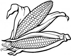 corn-coloring