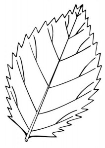 free_coloring_pages_leaf-