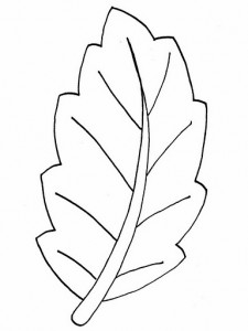 leaf_coloring