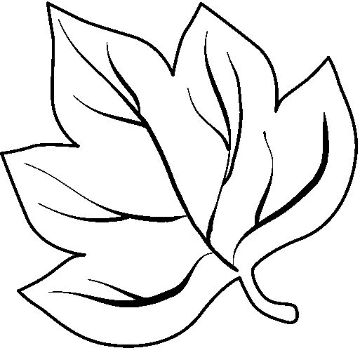Leaves coloring page part 2 | Crafts and Worksheets for Preschool ...