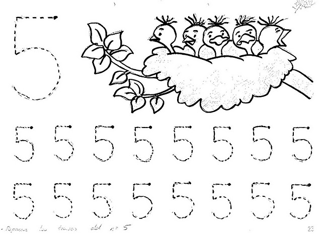 number five 5 coloring and tracing worksheets  (17)
