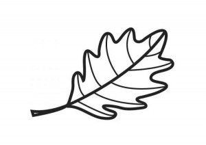 oak-leaf_free_coloring_pages