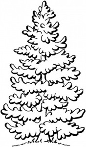 pine_tree_coloring