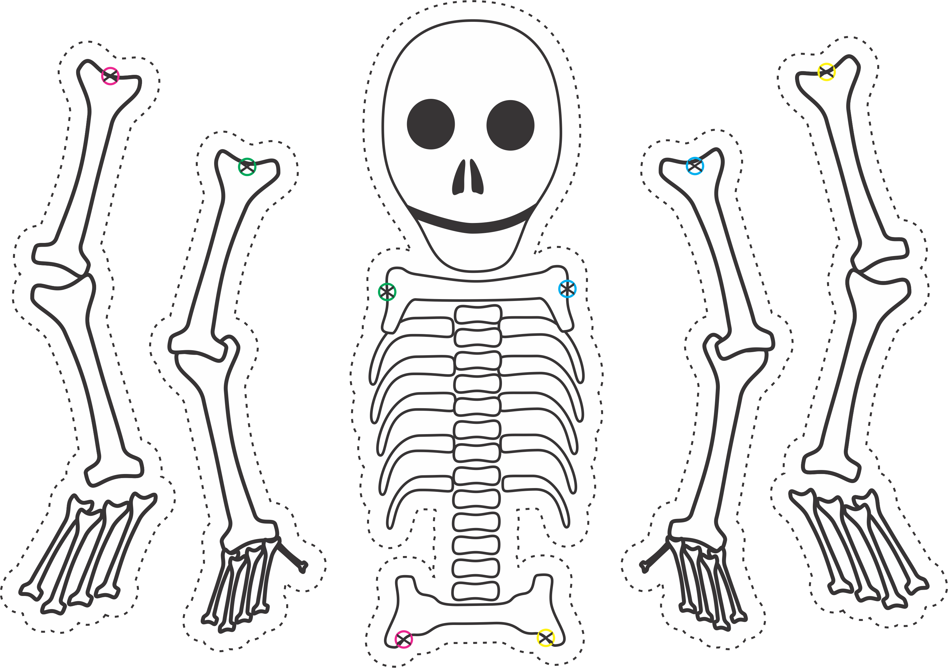 skeleton puppets using this template from - Halloween Skeleton Template