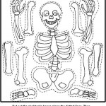 skeleton craft for kids (5)