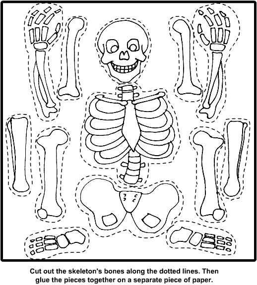 skeleton craft for kids 5 - Skeleton Pictures For Kids To Color
