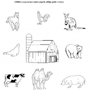 Matching animals to their home worksheet (2)