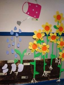 Plant Growth craft