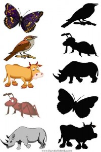 animal shadow match worksheets (6)