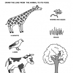 easy_animal_matching_worksheets_for_preschool_kids (1)