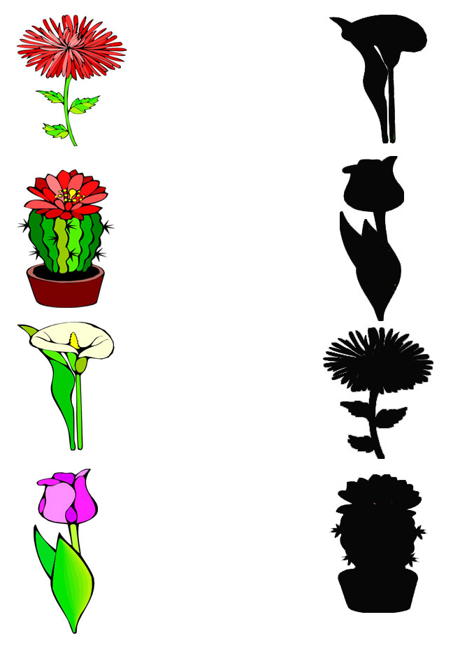 Bathroom Riddles For Kids in addition Preschool Letter Worksheet O likewise Hajj furthermore Toothbrush Craft furthermore Easy Shadow Match Worksheets For Preschool. on food worksheet for kids