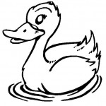 free duck coloring page for kids (2)