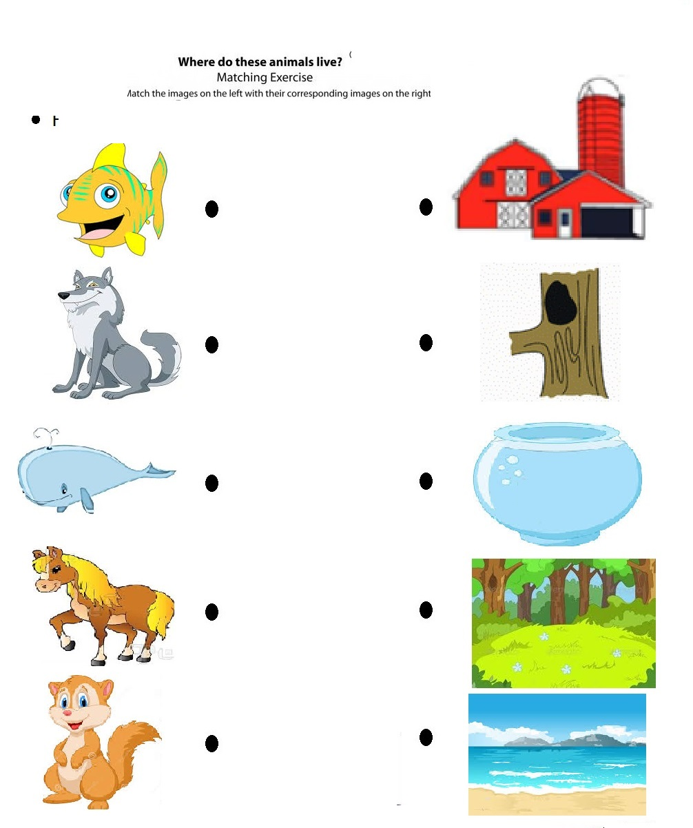 Free Printable Matching Animals To Their Home Worksheet 5