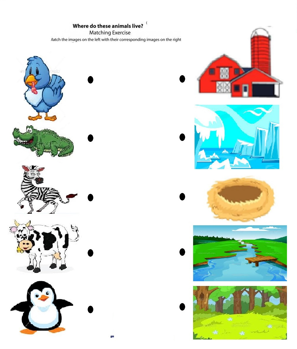free printable matching animals to their home worksheet (6)