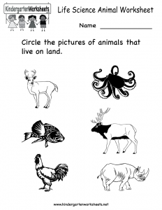 life-science-animal-worksheet-printable