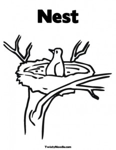 Nest Coloring Page Cat House