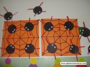 spider bulletin board