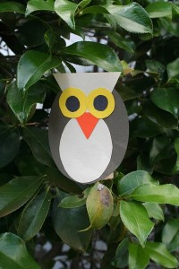 Shape owls craft