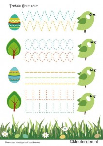 bird   trace worksheet