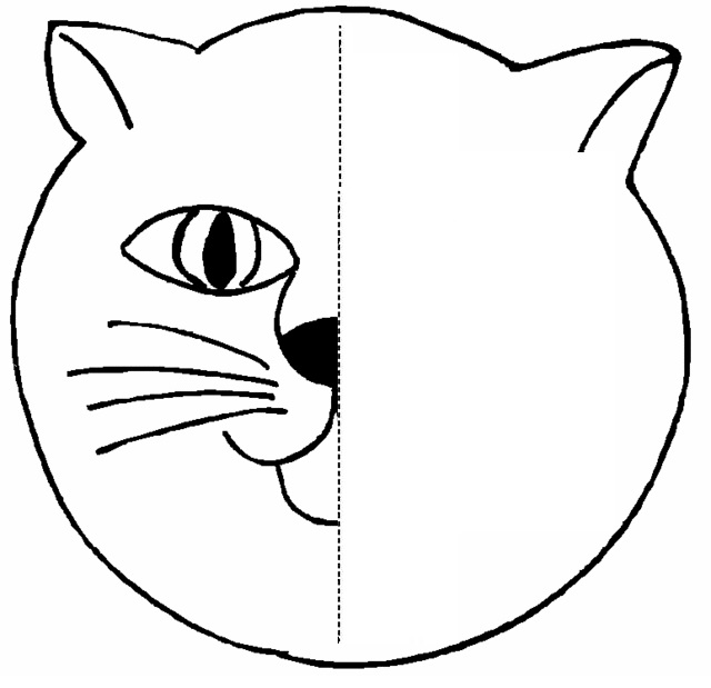 animal symmetry activity coloring pages crafts and worksheets