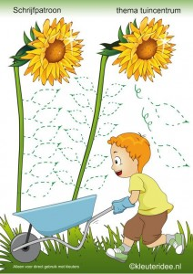 flower_trace_worksheet_for_kids