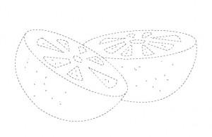 lemon trace worksheet