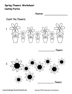 spring-flowers-worksheet-printable