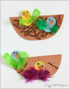 Nest and Bird Craft
