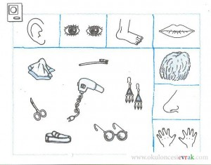 math worksheet : five senses worksheet for kids  crafts and worksheets for  : 5 Senses Worksheet For Kindergarten