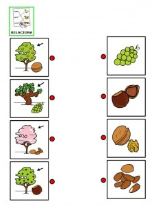 furit tree matching worksheet