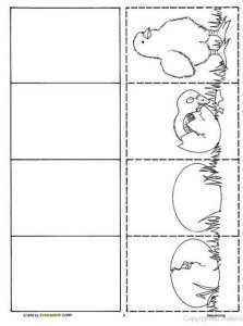 life cycle chick worksheet for kids