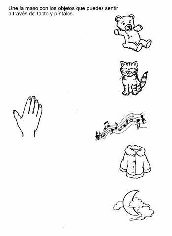 Five senses worksheet for kids | Crafts and Worksheets for ...