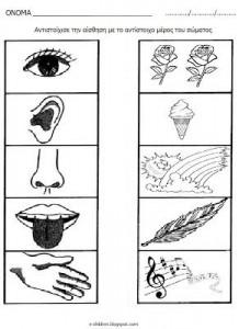 sense organs worksheet for preschool 2