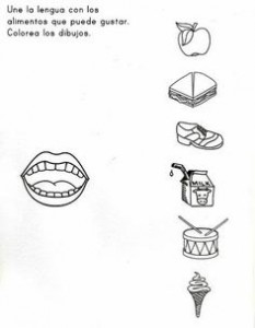 sense organs worksheet for preschool 3