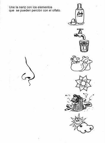 Five Senses Worksheet For Kids Crafts And Worksheets For Preschool