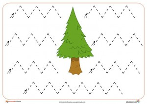 free printable tree trace worksheet (2)
