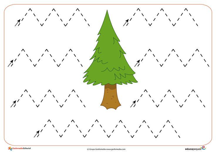 free printable tree trace worksheet (2)