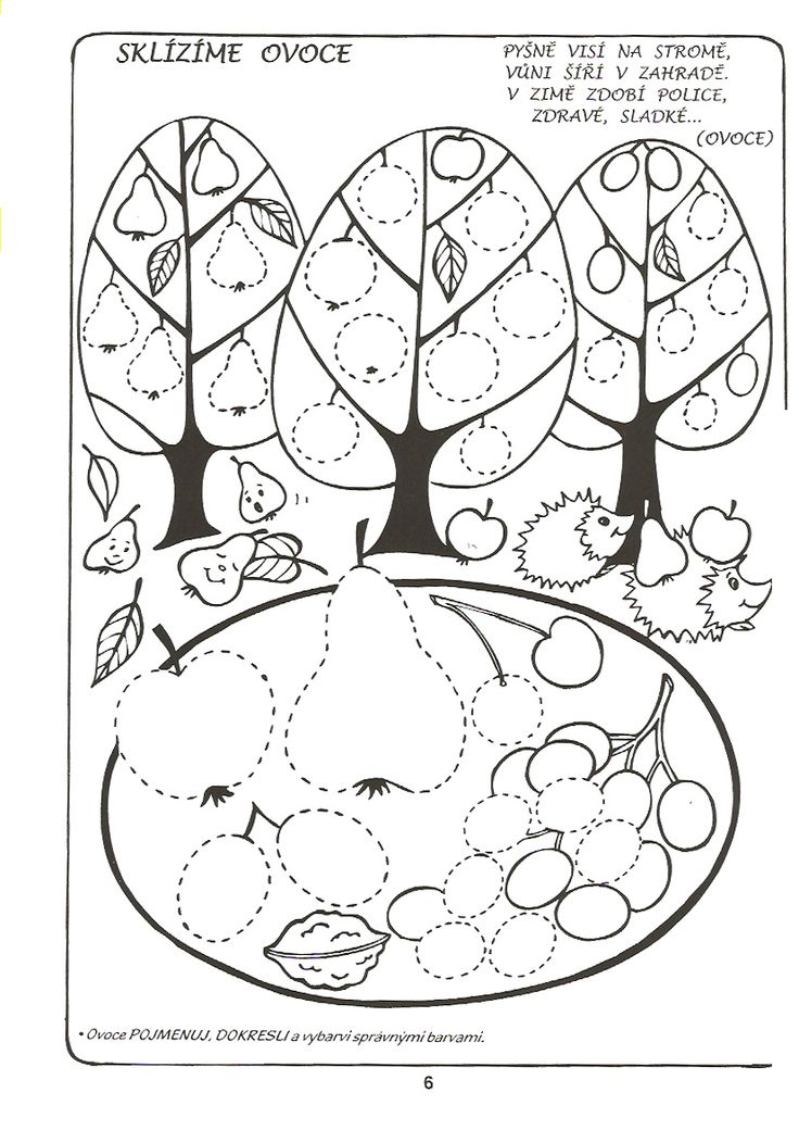 free printable tree trace worksheet (5)