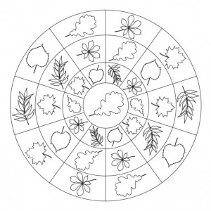 autumn mandala coloring page (8)