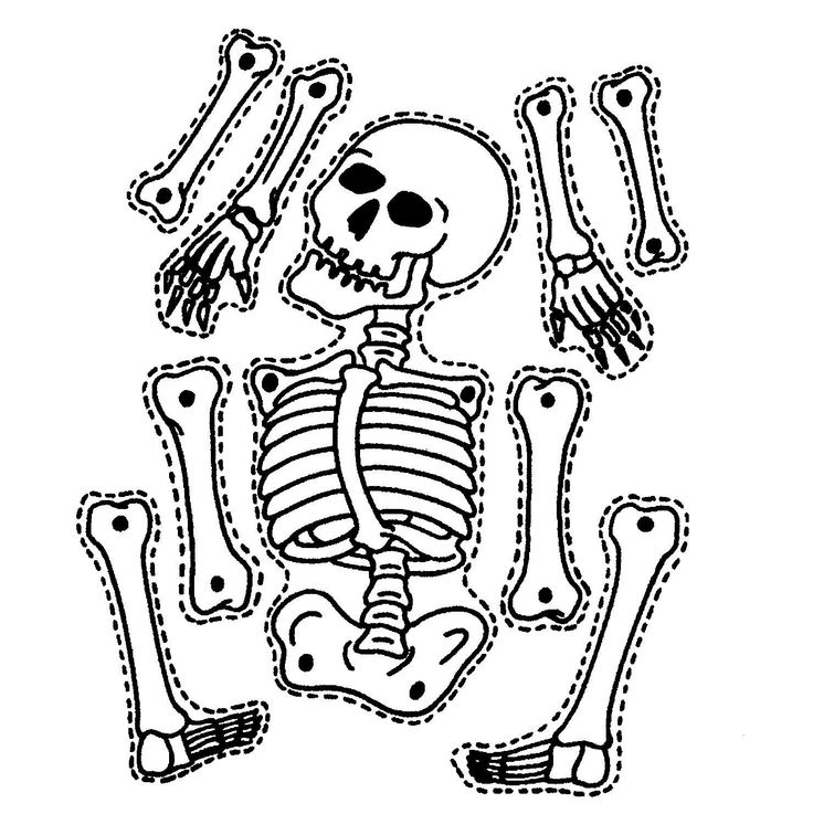 This Page Has A Lot Of Free Printable Skeleton Craft Coloring For Kids