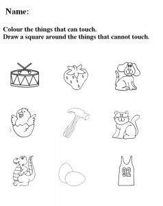 Five Senses Worksheets