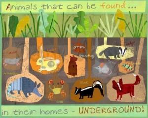 Underground (Habitats) bulletin board
