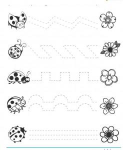 free ladybug trace worksheets
